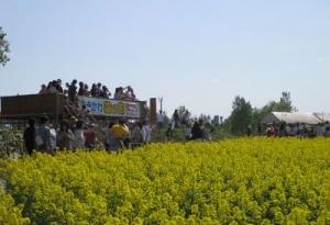 菜の花畑の見晴台の写真