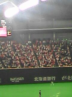 札幌ドームのカープファン