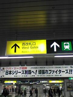 北海道に戻りました